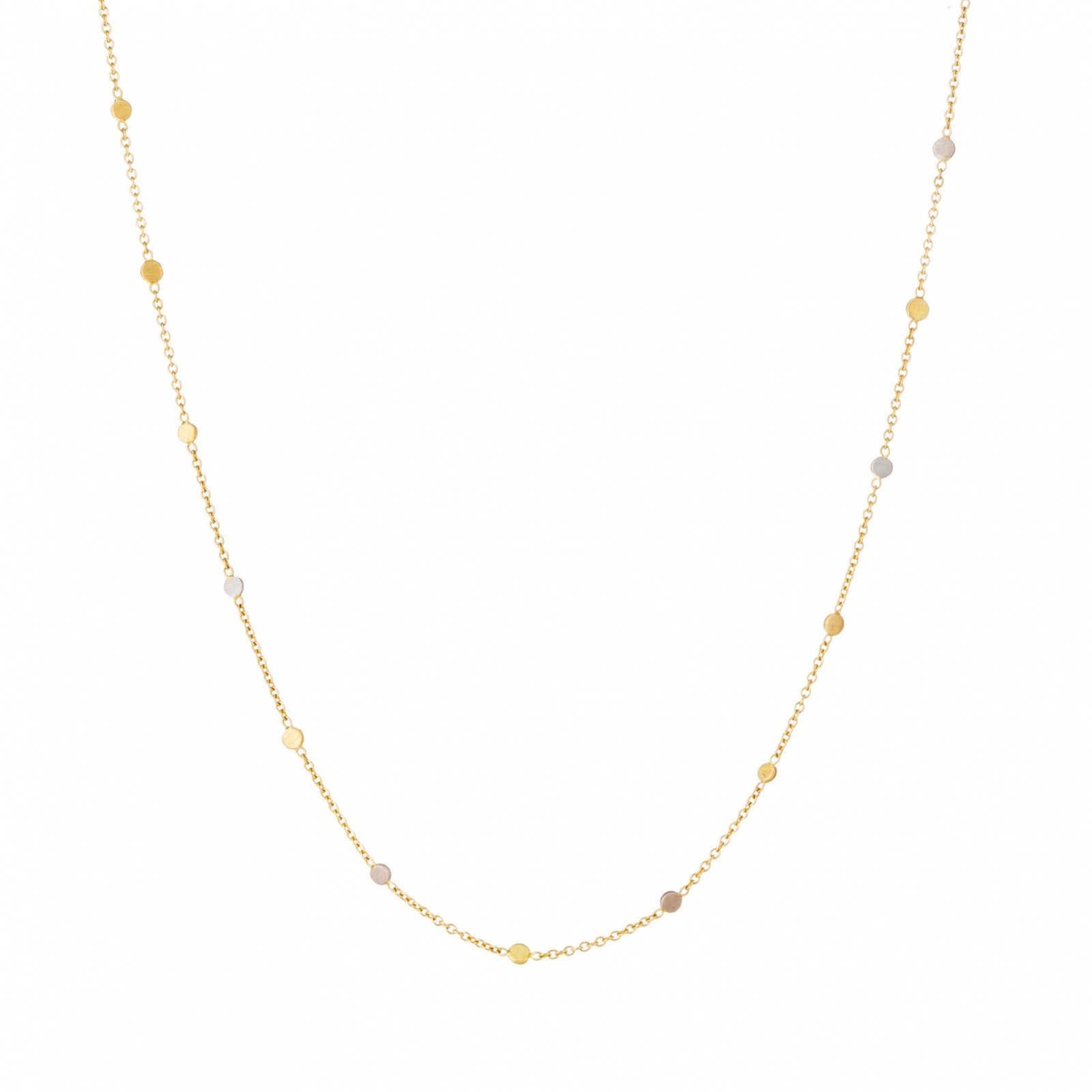 Sia Taylor SN4 YWP Gold Platinum Dust Necklace WB
